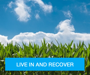 Live In and Recover